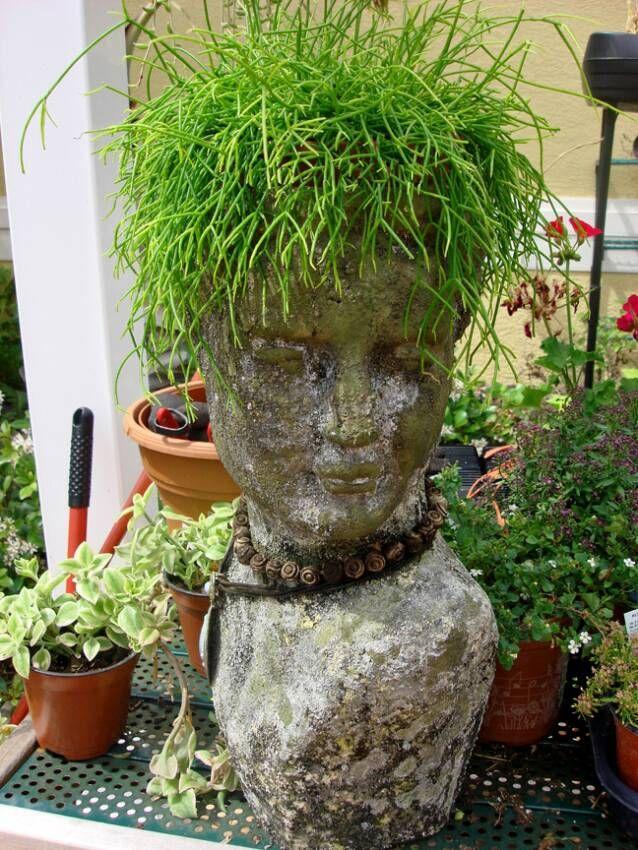 ۹۶۶۷a77997c8621e767aef95269240ce--planting-succulents-head-planters