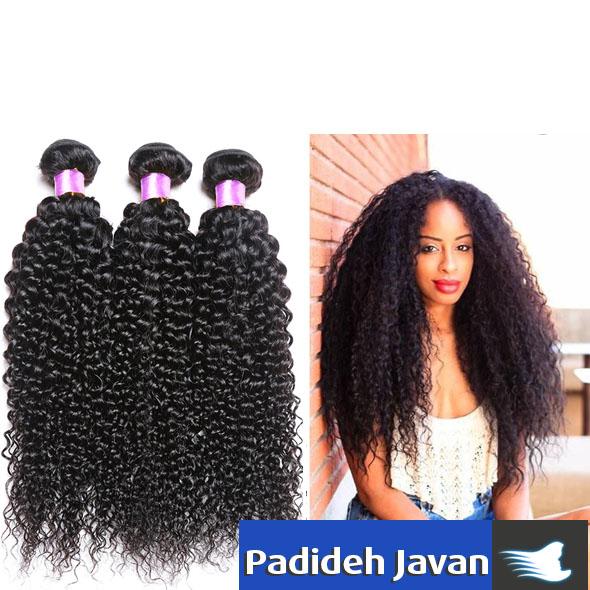 موی مغولی
